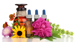bachensien-flower-essences-banner-500px